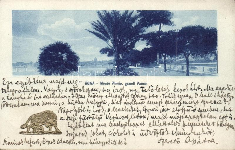 Rome, Monte Pincio, palm,  Capitoline Wolf, Emb., Róma, Monte Pincio, pálmák, Capitoliumi farkas, Emb.