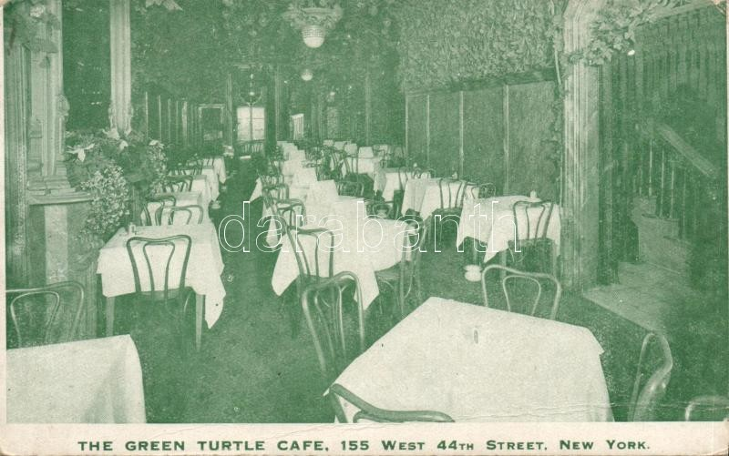 New York City, Green Turtle Café, interior