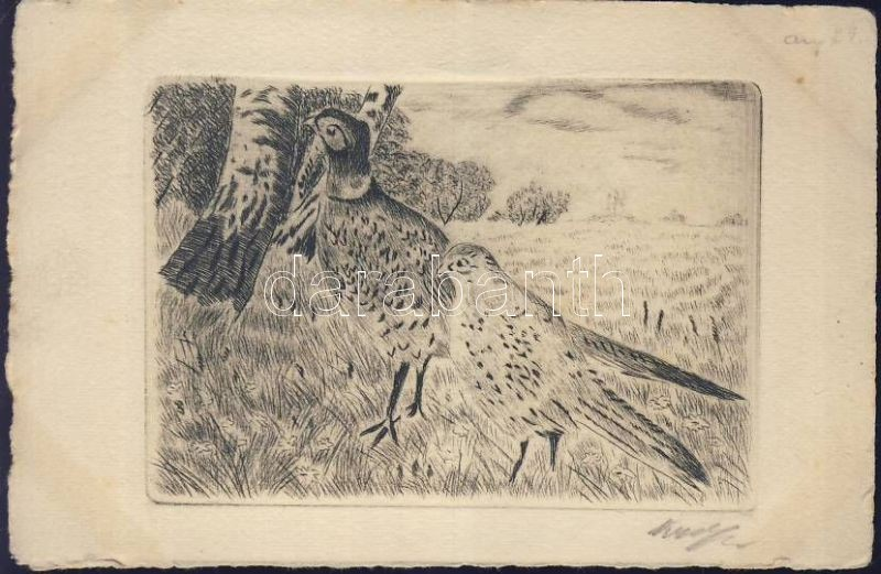 Pheasants, etching, artist signed
