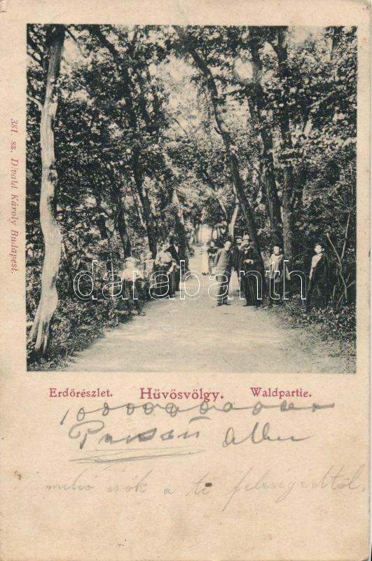 Budapest II. Hűvösvölgy erdő, Divald