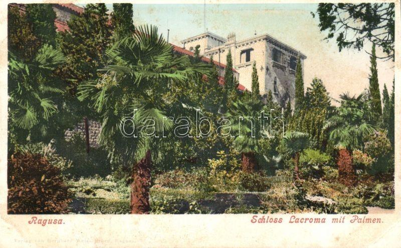 Dubrovnik, Ragusa; Schloss Lacroma, Palmen / castle, palm trees