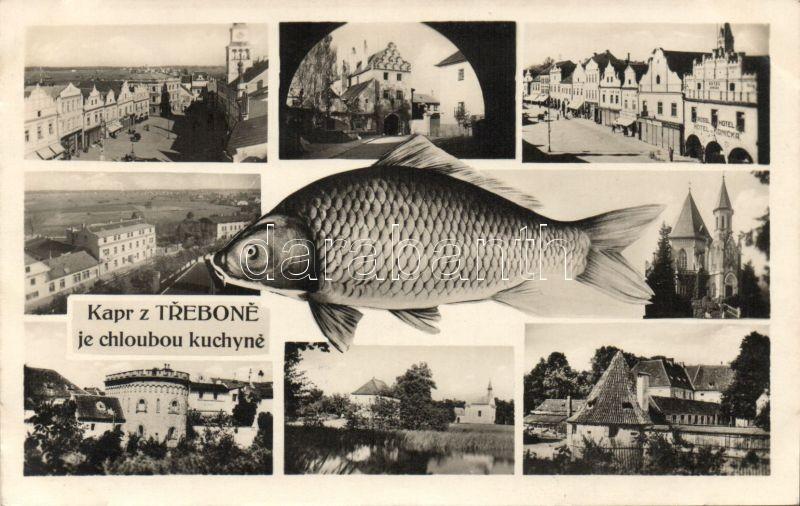 Trebon, fish, Rössl Hotel