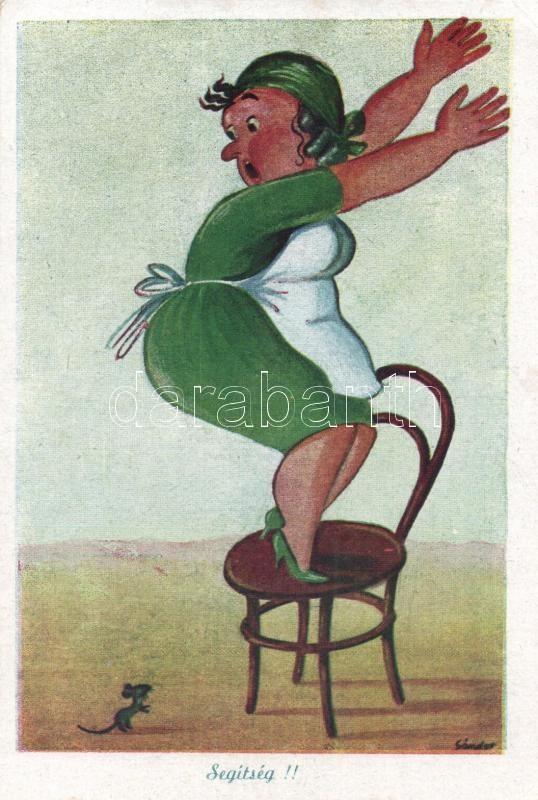 Help me! Housewife with mouse, humour s: Sándor, Segítség, Háziasszony egérrel, humor s: Sándor