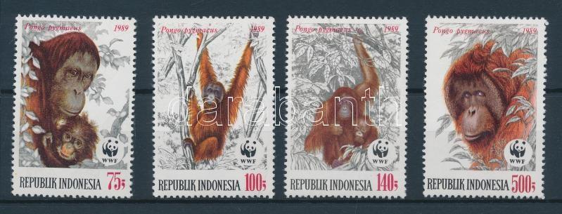 WWF Orangutan set WWF Orangután sor