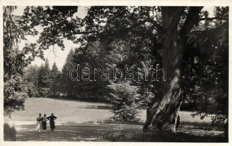 Parádfürdő park