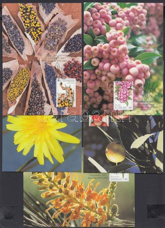 Bush fruits 5 CM, Bokor termések 5 CM
