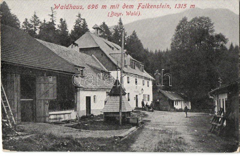Falkenstein, Waldhaus