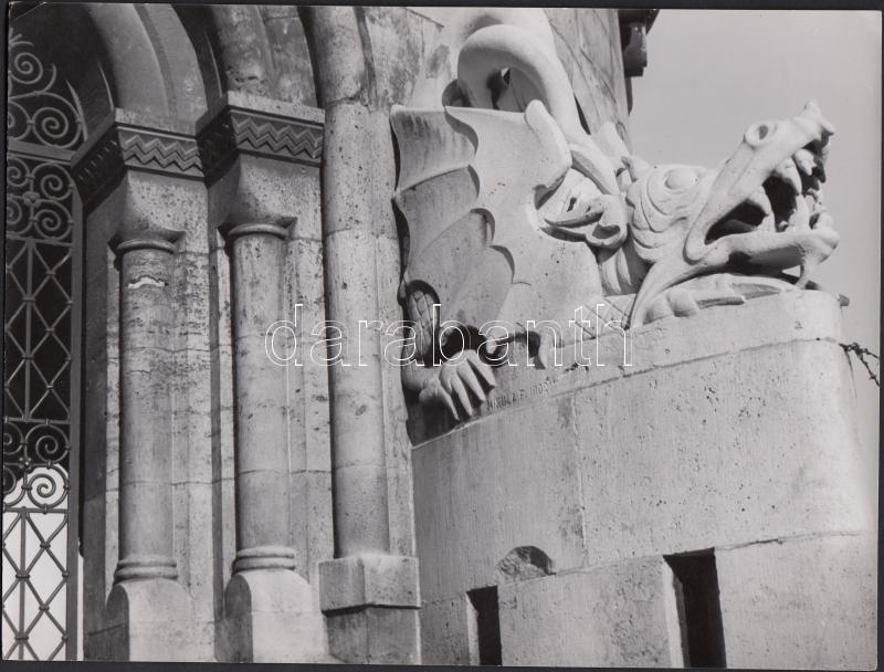 cca 1940 Tokaji András aláírt vintage felvétele egy budapesti kősárkányról, 18x24 cm