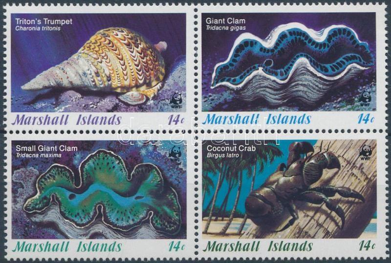 Marine snails and clams block of 4 + the set on 4 FDC, Tengeri csigák és kagylók négyestömb + ugyanaz a sor 4 FDC-n