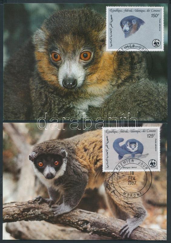 Montagu's lemur set 4 CM, Hamvas maki sor 4 CM