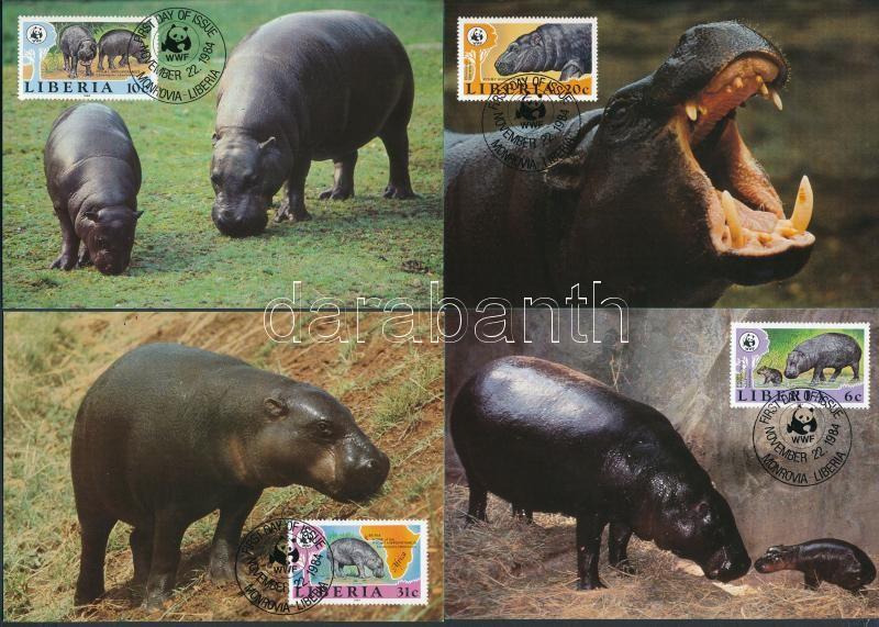 WWF törpevíziló sor 4 CM, WWF Dwarf Hippo set 4 CM