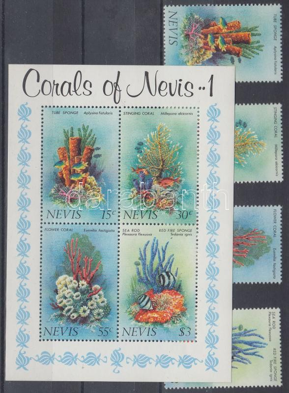 Sponges and corals set + block, Szivacsok és korallok sor + blokk