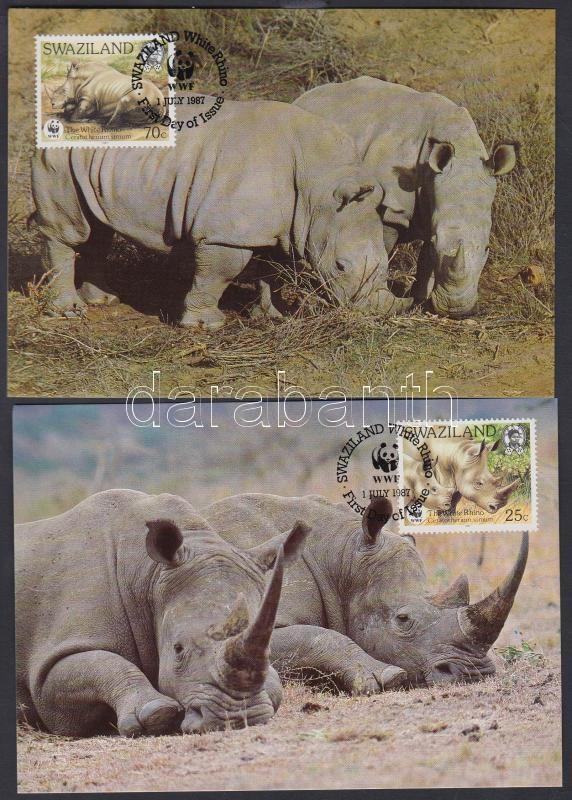 WWF Rhinos set on 4 CM, WWF Orrszarvúak sor 4 CM