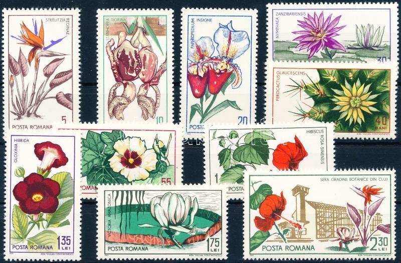 45th anniversary of Cluj-Napoca Botanical Garden; Flowers set, 45 éves a kolozsvári Botanikus kert; Virág sor
