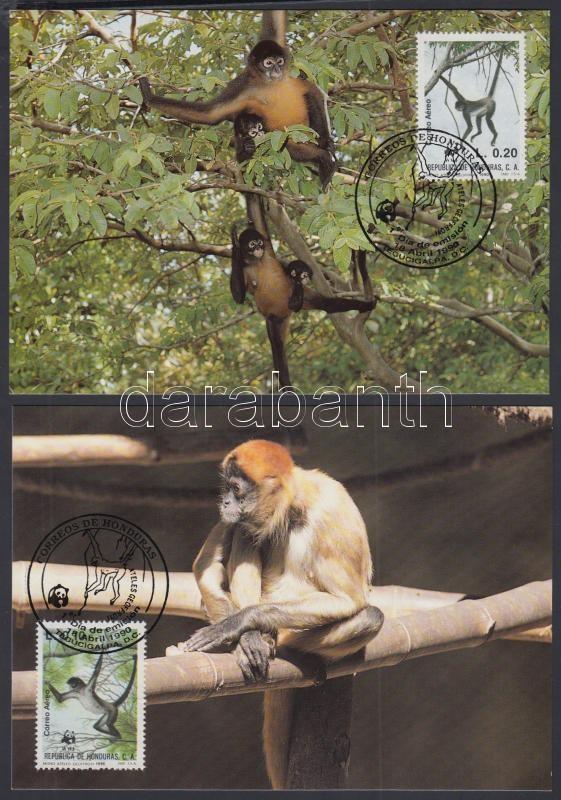WWF-Geoffroy's spider monkey set on 4 CM, WWF Geoffroy-pókmajom sor 4 CM