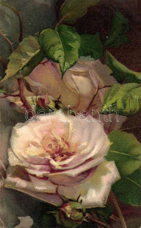 Rose litho, Rózsa, litho