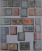 Dél-Amerika Maradvány gyűjtemény sok régi értékkel házi készítésű filázott albumlapokon rugós borítóval
