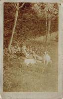 Hunter boy with hunting dogs, photo, Fiatal vadász kutyákkal, fotó