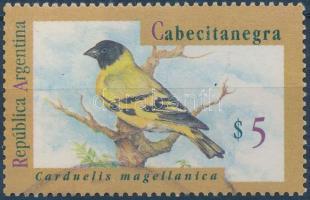 Native songbirds, Őshonos énekes madarak
