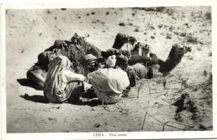 Libyan folklore, camels in the desert, Líbiai folklór, tevék a sivatagban