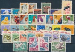 Animals 36 stamps with sets and pair, Állat motívum 36 db bélyeg, közte teljes sorok és pár