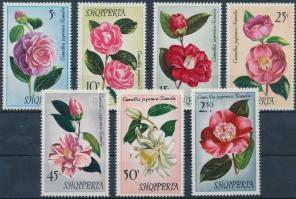 Camellia set, Kaméliák sor