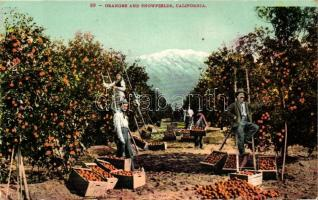 California, Oranges and snowfields