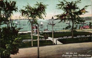 Portland, Fort Allen park, ships