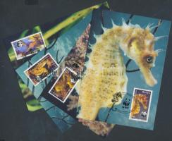2002 WWF Tengeri csikó sor Mi 1207-1210 4 CM