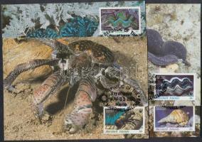 1986 WWF tengeri csigák és kagylók sor Mi 73-76 4 CM