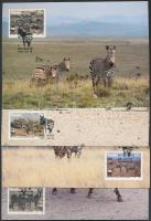 1991 WWF zebra sor Mi 702-705 4 CM