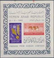 1963 Az éhezés ellen vágott blokk Mi 14