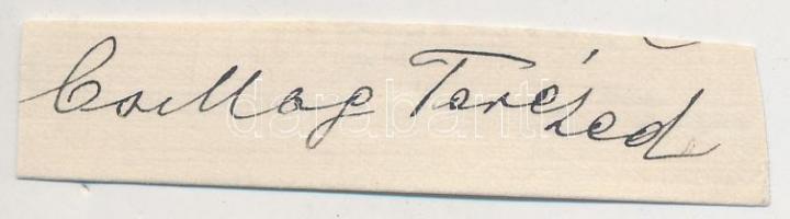Csillag Teréz (1862-1925) színésznő. Aláírás kivágáson.