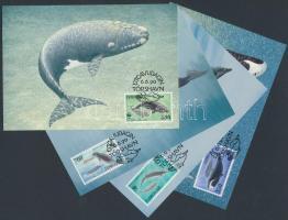 WWF Whales set on 4 CM, WWF Bálnák sor 4 CM