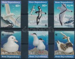Antarktiszi vízimadarak sor Antarctic waterbirds set