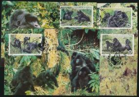 WWF Gorillas set on 4 CM, WWF Gorillák sor 4 CM
