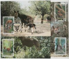 1984 WWF Okapik sor Mi 875-878 4 CM