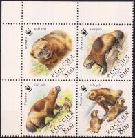 2004 WWF Rozsomák ívsarki négyestömb + kisív Mi 1198-1201