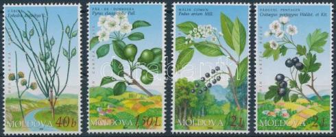 2004 Vörös könyv: Virág sor Mi 501-504