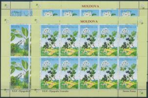 2004 Vörös könyv: Virág kisív sor Mi 501-504