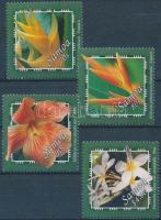 Tropical plants set, Trópusi növények sor