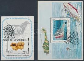 1993-1994 Dog and Boat Misfortune 2 diff blocks + First Day casual cancellation 1993-1994 Kutya és Hajó szerencsétlenség 2 klf blokk + Elsőnapi alkalmi bélyegzéssel