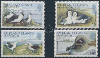 Albatrosz; Madár sor Albatross Bird set