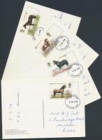 1978 Ló sor Mi 769-772 4 FDC, a bélyeg képpel megegyező képeslapok
