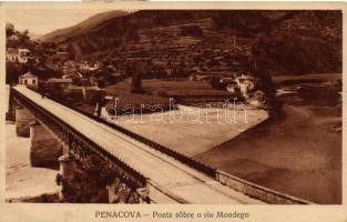 Penacova, Bridge, Mondego river (EK)