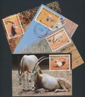 WWF: Antelope set on 4 CM, WWF: Antilop sor 4 CM-n