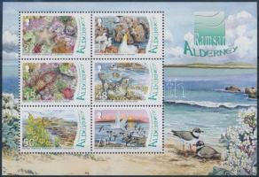 2007 Ramsar Alderney vízivilág blokk Mi 19