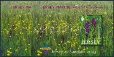 2003 Orchideák, BANGKOK nemzetközi bélyegkiállítás 2 klf blokk Mi 38 + 38 I