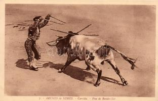 Nimes, Arena, bullfight, torreador