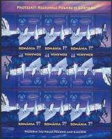 2009 Nemzetközi kampány a Sarkvidékek védelmére kisív sor Mi 6348-6349